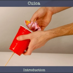 Cuica (Laughing Cup): Make a Musical Instrument