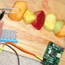 Fruit Xylophone: Fruit Salad Instrument of the Future!