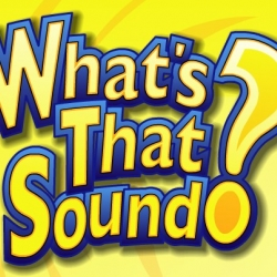 What S That Sound