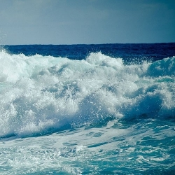 Catch a Wave: How Waves are Formed