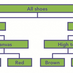 Shoe Dichotomous Key