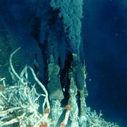 Make Your Own Deep-Sea Vent