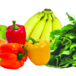 Fruits and Vegetables: Color Your Plate