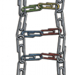 The Ladder of Life