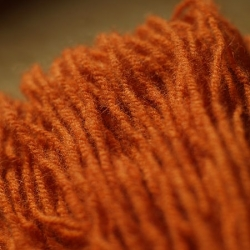 Dyeing Wool with Fungi
