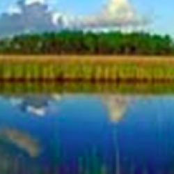 Human Impact on Estuaries: A Terrible Spill in Grand Bay