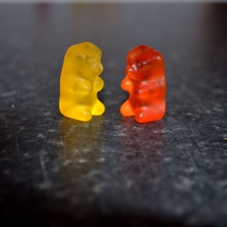 Diffusion of Water with Gummy Bears